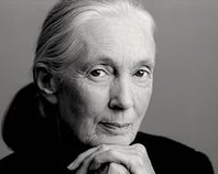 Evening with Jane Goodall