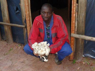 community member displays mushroom harvest