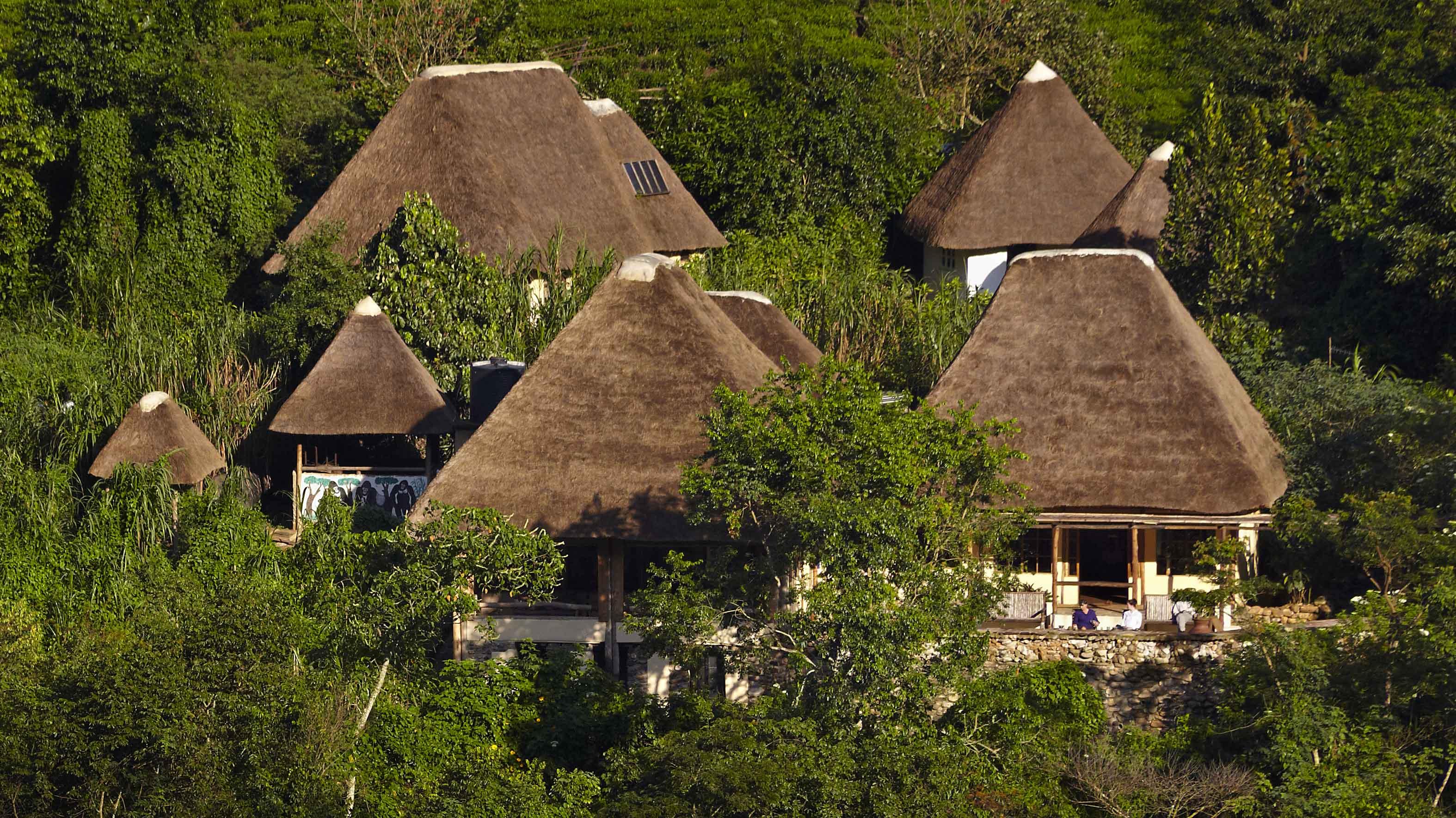 7 Bwindi Overview