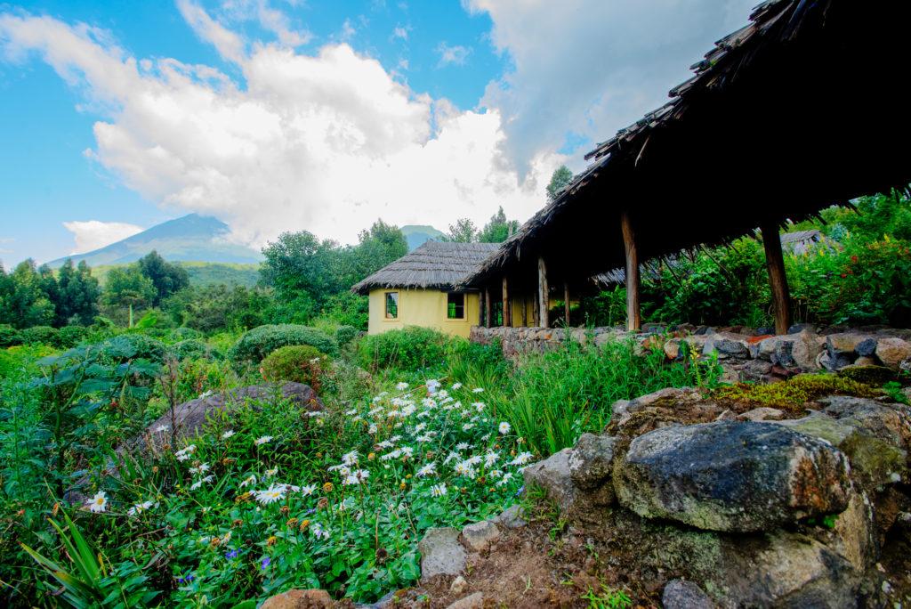 randazoo-gahinga-lodge-201504